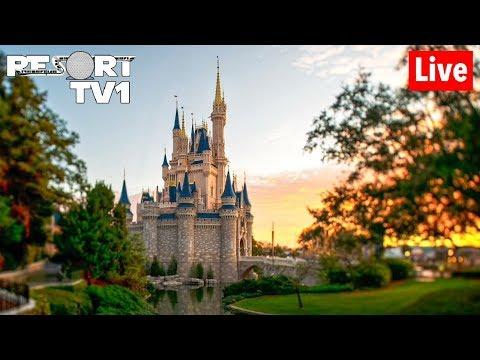 🔴: Magic Kingdom New Snacks Rides & More 1080p Walt Disney World  Stream - 7-7-19