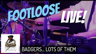 Footloose [Kenny Loggins] // Badgers... Lots Of Them // LIVE COVER