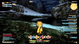 FFXIV ARR Squall Gets In Trouble (blooper)