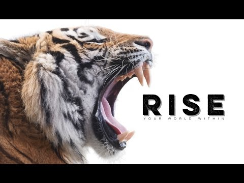 Rise – Motivational Audio Compilation