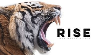 Rise - Motivational Audio Compilation