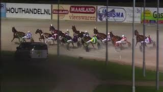 Vidéo de la course PMU PRIX ELEVAGE SEVENTY ONE