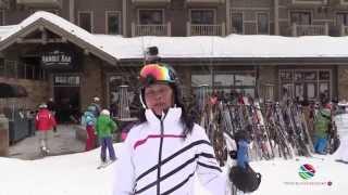 Skiing Pooh Bear, Jacksons Hole Wyoming USA