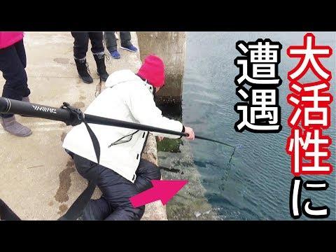 堤防で大活性に遭遇!網で掬って食べてもうた・・・