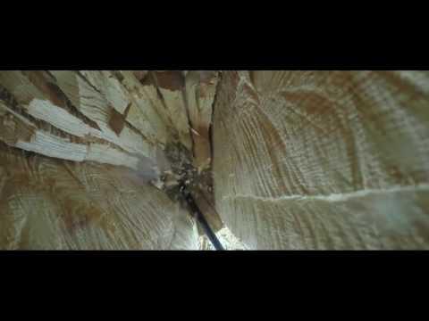 Охотники за медом (в кино с 16 марта)
