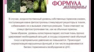 видео Младомастон (арт лайф)