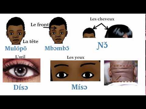 Les parties du corps humain en langue Duala