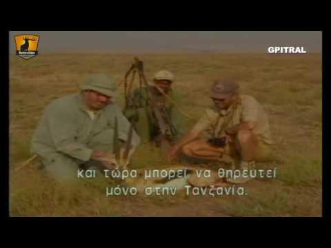 35 Masailand 1 Στη Γη των Masai Εκπαιδευτικά βίντεο