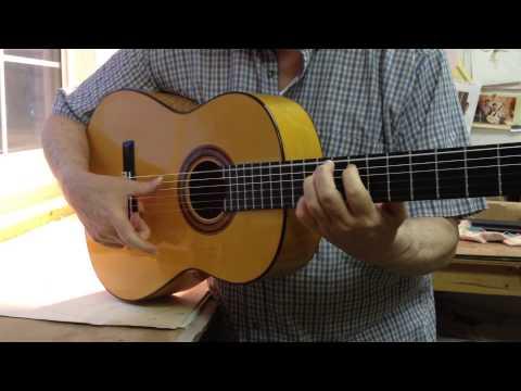 Manuel Adalid Flamenco