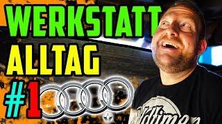 WERKSTATT ALLTAG #1 - Ungewöhnlich viele 5Zylinder! - 2x Audi S2 - Audi S4 - Audi 300!