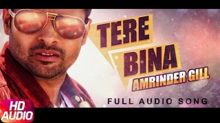 Tere bina | amrinder gill | full audio song | speed records