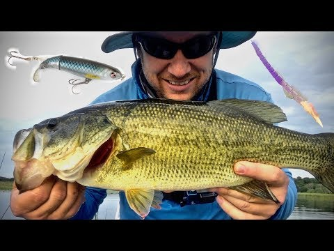 Tips and Techniques For Bass Fishing With Whopper Plopper's and Finesse Worm's!!! (How To)