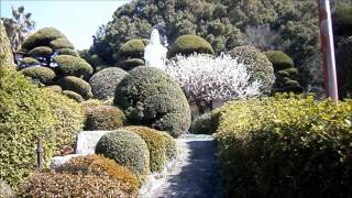●錦鯉のりんりんパークFrom愛媛県西条市の公園