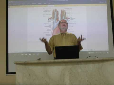 Anatomy of brachiocephalic veins, superior vena cava and pulmonary trunk pt1 by Dr.Wahdan