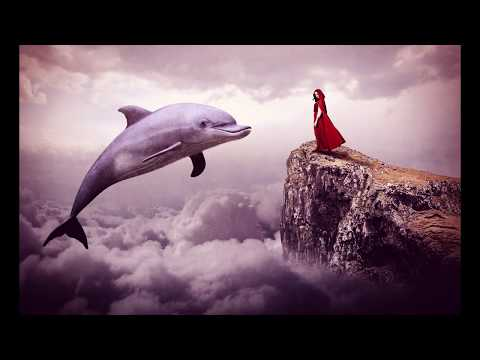 Giant Dolphin Photoshop Manipulation Tutorial Processing 2019