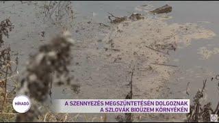 A szennyezés megszüntetésén dolgoznak a szlovák bioüzem környékén