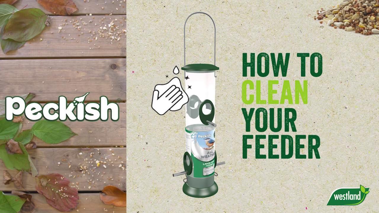 How To Clean A Bird Feeder