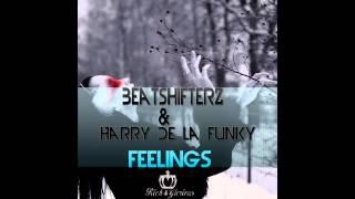 BeatshifterZ & Harry De La Funky - Feelings (Original Mix)
