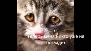 Кот Сергей Помним Грустная