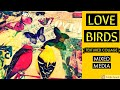 LOVE BIRDS.....MIXED MEDIA ART JOURNAL