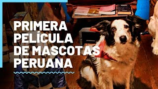 """""""De patitas a la calle"""": Primera película peruana con mascotas protagonistas"""