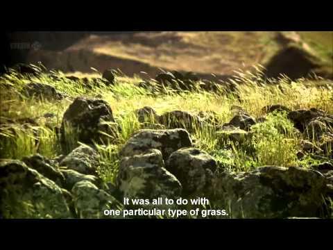 The Origins Of Civilization: Göbekli Tepe