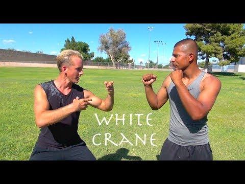Basic Self-Defense Moves Anyone Can Do (and Everyone ...