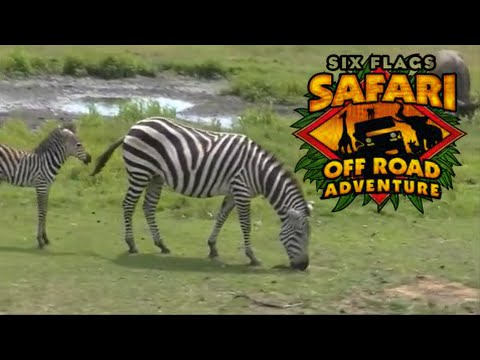 Safari Off Road Adventure FULL On Ride POV Six Flags Great Adventure