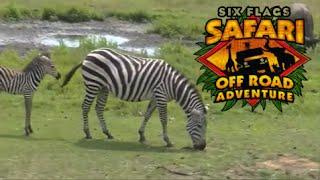 Safari Off Road Adventure FULL On Ride POV Six Flags Great Adventure