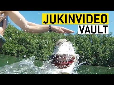 Wait for it JukinVideo Vault    JukinVideo Vault