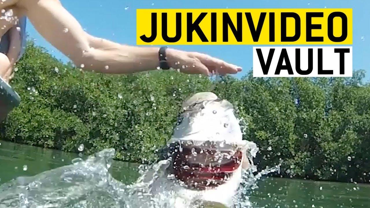Wait for it JukinVideo Vault || JukinVideo Vault