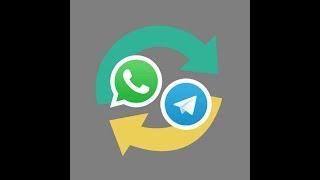 WhatApp Telegram The Real Bridge