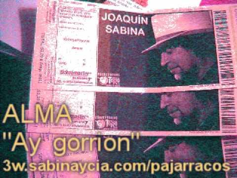 Alma Ay Gorrion letra de Joaquin Sabina