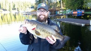 Giant Largemouth Bass In February [Washington State]