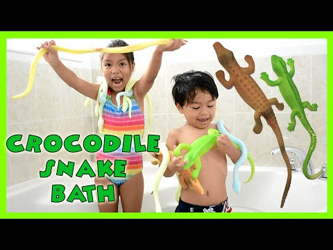GIANT GROW CROCODILE Bath!  Snakes Aligators Lizards Spiders | Kids Science Review