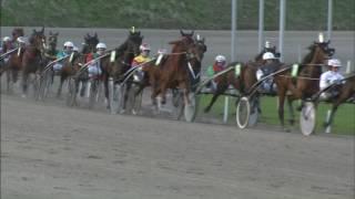 Vidéo de la course PMU PRIX D'ALKMAAR (SILVER CHALLENGE)