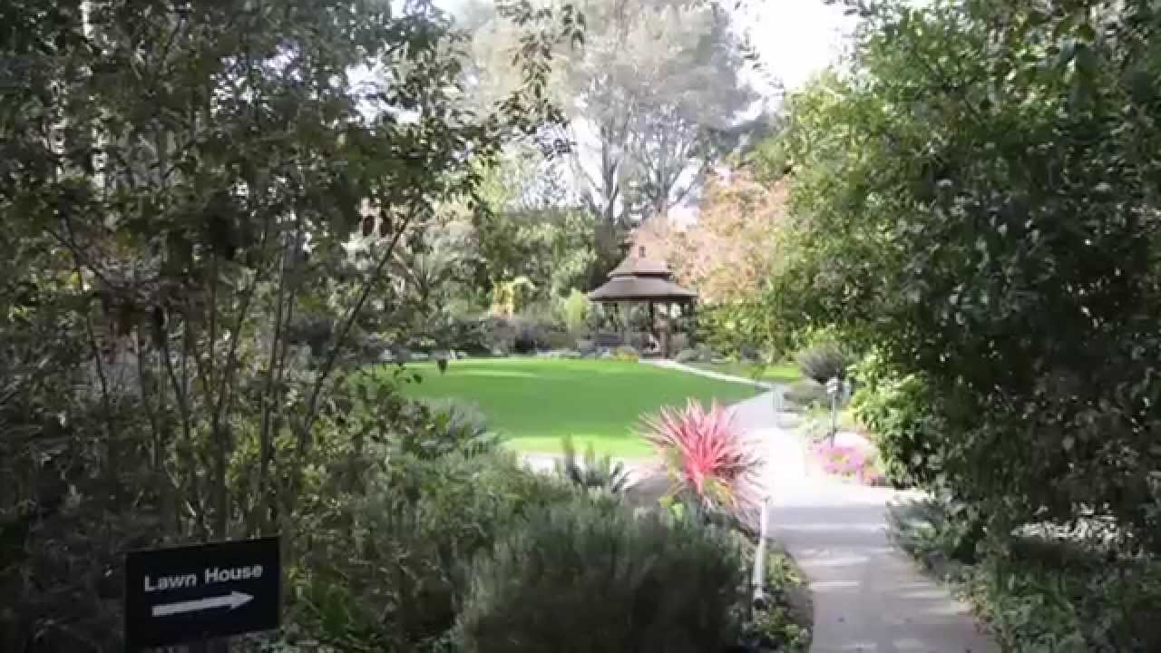 San Diego Botanic Garden In Encinitas Youtube