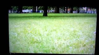 Sony KDL-60W605b banding test