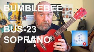 Got A Ukulele Reviews - Bumblebee BUS-23 Soprano - 4K