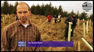 UK Ahmadi Muslim Youths plant trees