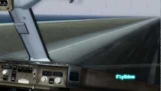 Delta Airlines 767-300ER Landing in Hong Kong VHHH[FS2004]