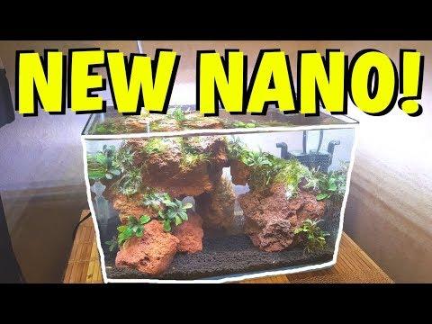 NEW FISH and NEW NANO TANK AQUASCAPE!