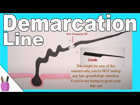 What Is Demarcation Line / Point For Hair?  (... And Breakage?)