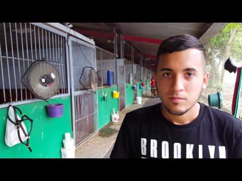 Raymond Morales - Clásico Roberto Clemente 2016