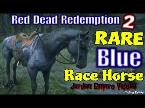 Red Dead Redemption 2 Rare Blue Race Horse Spawn Method With