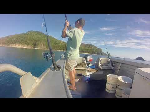 Mackay. Cockermouth Island.Shallow Water Reef Fishing