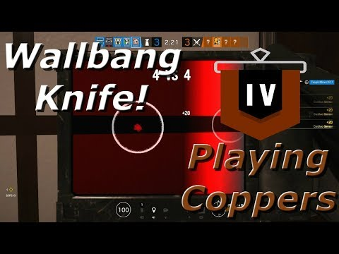 New Pulse Meta! Road To Copper - Rainbow Six Siege Funny Moments