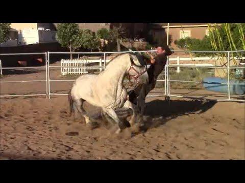When Horses Attack Part 1, Mike Hughes, Auburn California