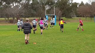 Under 9s rugby league TANIELA
