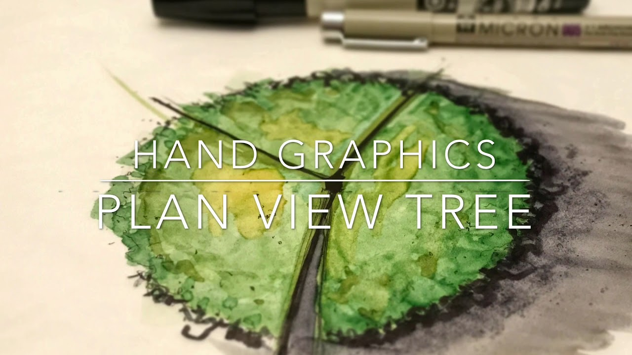 How To Draw A Plan View Tree With Watercolor Effect Youtube